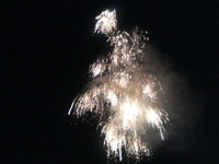 2006_816_2005